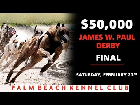 2019 James W Paul 3/8ths Mile Derby