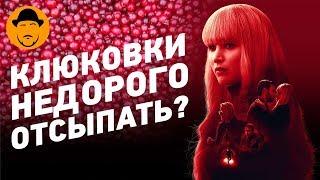 КРАСНЫЙ от стыда ВОРОБЕЙ и пара НЕСТАНДАРТНЫХ фильмов – Обзор Премьер
