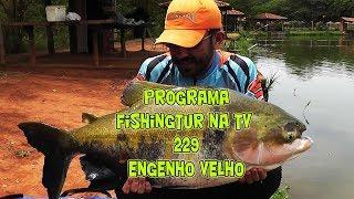 Programa Fishingtur na Tv 229 - Engelho Velho