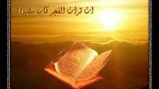 preview picture of video 'ثلاوة الشيخ اليبي ابوحليقة'