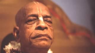 Madman Civilisation - Prabhupada 0002