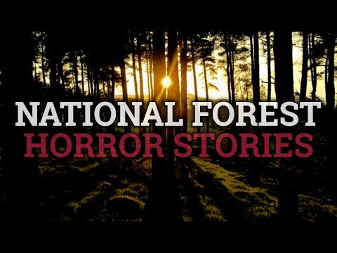 6 Scary National Forest Stories