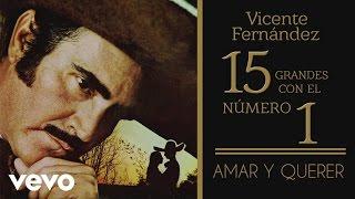 Vicente Fernández - Amar y Querer (Tema Remasterizado) [Cover Audio]