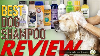 Top 10 Best Dog Shampoo & Conditioners 2020 REVIEWS
