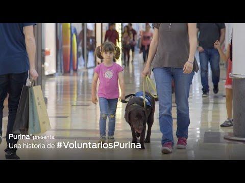 Imagen del vídeo Pequeños Héroes 2016 (Ep 3)