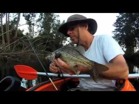 Wild River Bass Fishing in Australia, NSW