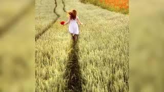 تحميل اغاني يا أهل الهوى لا تلومونا ربيع الخولي / النسخة الأصلية / Rabie Al-Kholi / جينا انصيد الحبايب MP3