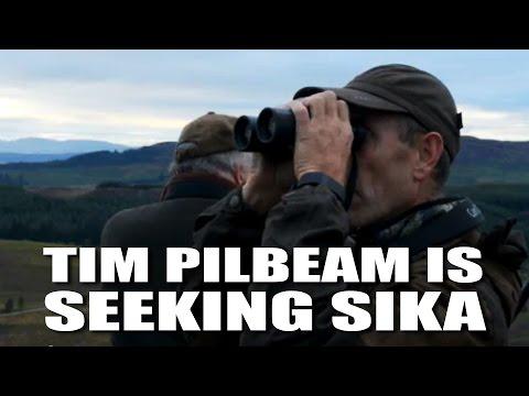 Tim Pilbeam is Seeking Sika