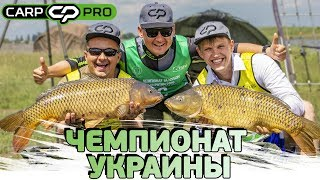 Чемпионы россии по карповой ловли фамилии имена