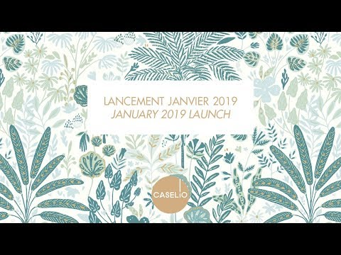 COLLECTIONS JANVIER 2019
