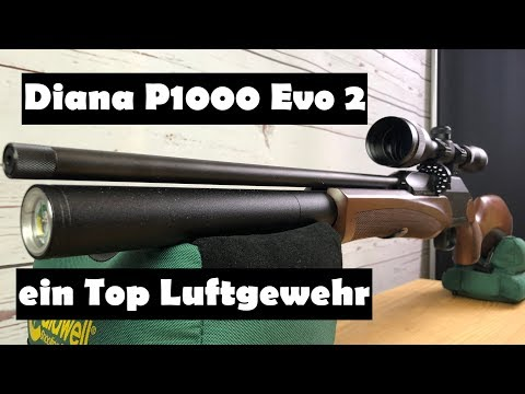 airghandi: Test + Video: Pressluftgewehr DIANA P1000 Evo2 von German Sport Guns im AirGhandi-Test