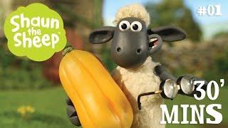 Download Video Những Chú Cừu Thông Minh - Tập 1 [30 phút] MP3 3GP MP4