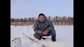 Ловля налима зимой на печоре