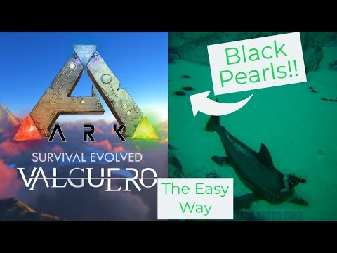 Help With Black Pearls The Island Ark Survival Evolved General Discussions I was very precise at my dot placements on this one! help with black pearls the island