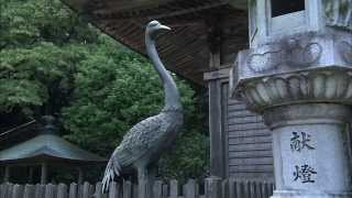 徳島観光スポットforJapanese