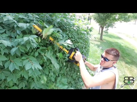 DeWalt 40v Battery Operated Hedge Trimmer Review