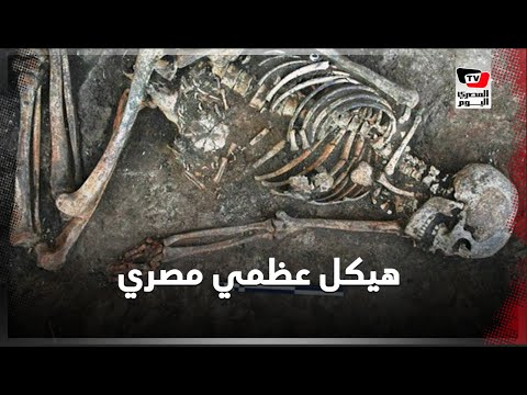 هيكل عظمي مصري عمره 40 ألف عامًا