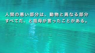 人間関係に行き詰まった時の名言「伊坂幸太郎作品より」
