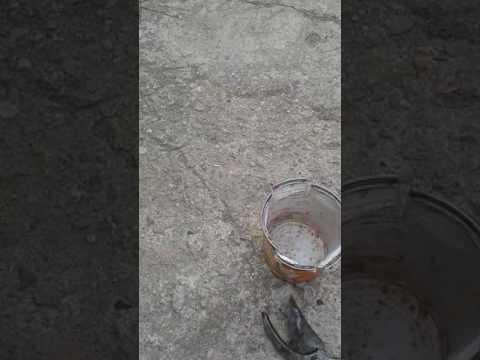 Olio di zucca allatto di risposte lyambliya
