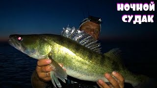 Набомбили ночного судака с сыном! Двухдневная рыбалка на реке Днепр!