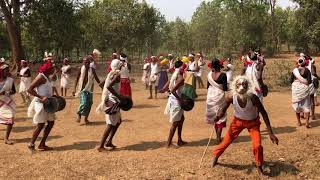 Ghotul Dance Or Mandri Dance By Muria Tribe Of Bastar