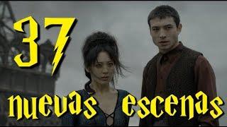 Análisis de las 37 nuevas escenas de Los Crímenes de Grindelwald