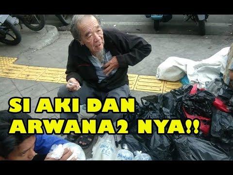 mp4 Doctor Aki Surabaya, download Doctor Aki Surabaya video klip Doctor Aki Surabaya