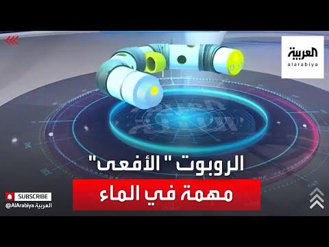 العرب اليوم - شاهد: روبوت يقوم بصيانة خطوط النفط في أعماق البحار