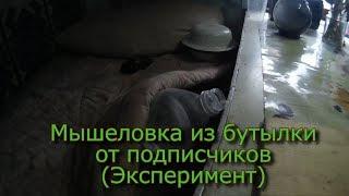 Мышеловка из бутылки, от подписчиков (Эксперимент)