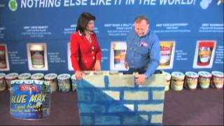 Information product presentation for Ames'® Research Laboratories waterproof paints-