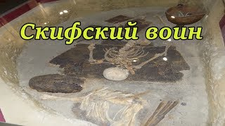 Скифский воин V-IV вв. до н.э