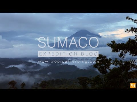 Sumaco Expedition
