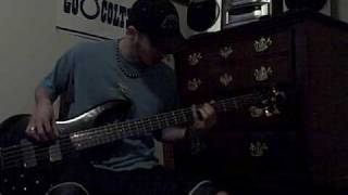 311 - I Like the Way - Bass Cover Video