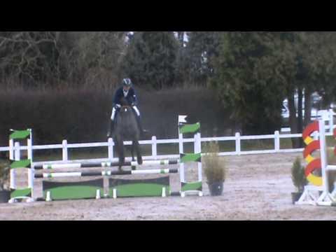 WVUR 4Y horses Aalter April2013
