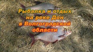 Рыбалка в волгоградской области с координатами