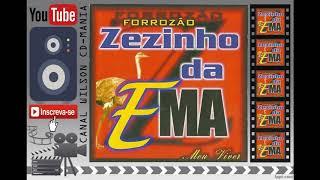 ZEZINHO DA EMA E BANDA VOL. 05 Meu Viver (2001)