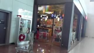 ブラジルサンパウロのグアルーリョス国際空港様子2