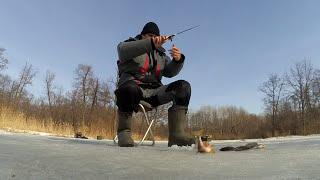 Хитрости рыбалка на малых реках черноземья