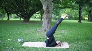 Protected: June 23, 2021 – Shona Maggio – Hatha Yoga (Level I)