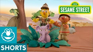 Sesame Street: Bert and Ernie's Great Adventures -- Lost Elephant