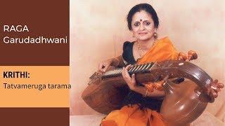 Raga Series: Raga Garudadhwani in Veena by Jayalakshmi Sekhar 008
