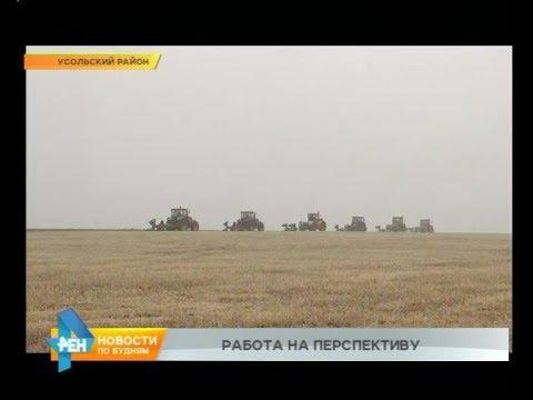 200 млн рублей выделено в регионе аграриям на компенсацию затрат по ГСМ