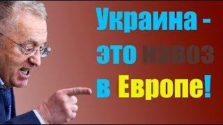 """Жириновский: """"Мы будем ВЫНУЖДЕНЫ ответить!"""""""