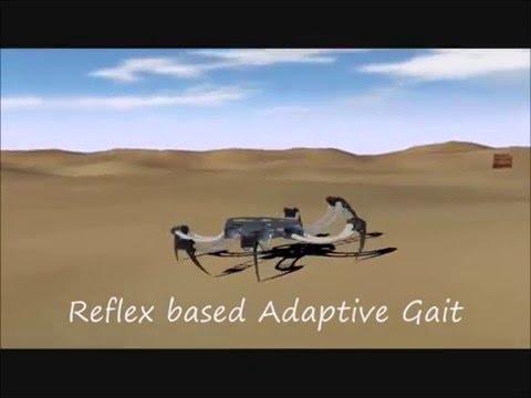 Six legged walking robot simulations