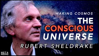 The Conscious Universe with Rupert Sheldrake Ph.D. | Waking Cosmos