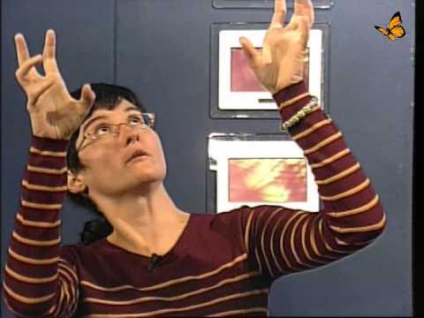 10 Übungen von Rückenschmerzen von Bubnovskaya