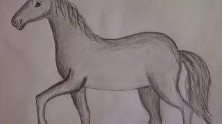 Смотреть онлайн Урок рисования карандашом для детей 5-10 лет
