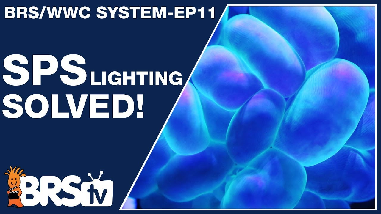 Ep11: SPS reef tank lighting made simple and stable. - The BRS/WWC System