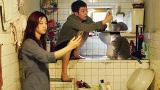 在韓國地下室生活了2年的留學生,告訴你為什麼《寄生蟲》拍得真實 |哇薩比抓馬VLOG1