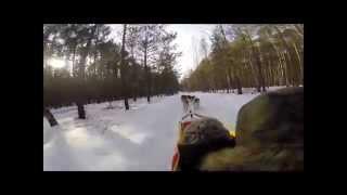 preview picture of video 'Syberiada Adventure - psie zaprzęgi w Śliwiczkach, w Borach Tucholskich'